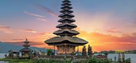 Aquatic Bali